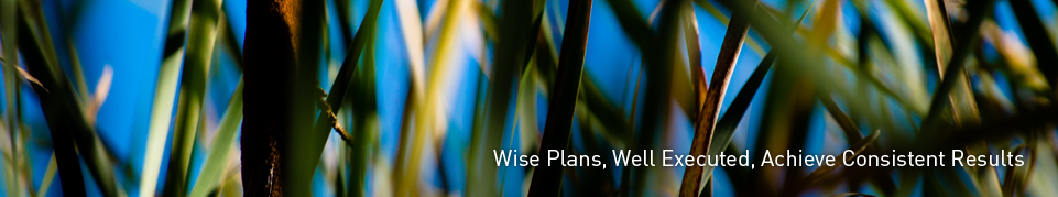 Wise Plans, Well Executed, Achieve Consistent Results